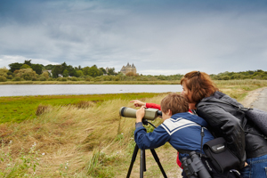touristes observant oiseaux