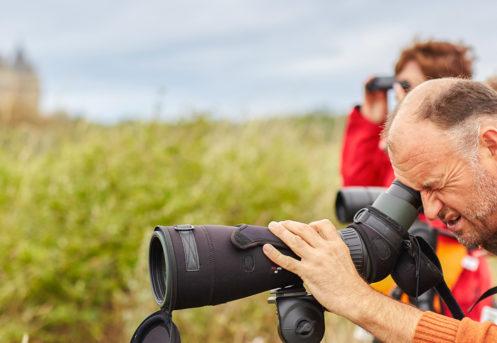 david ledan ornithologue