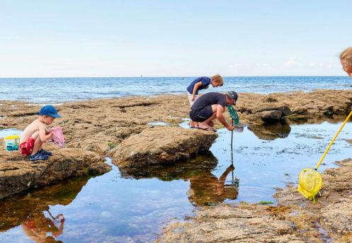 enfants jouant a maree basse